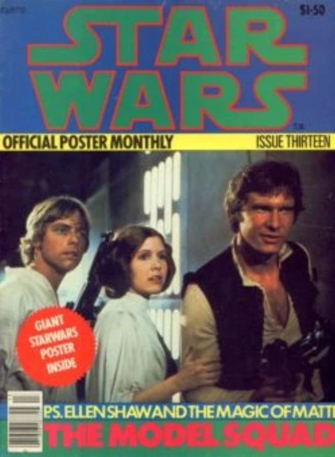 Star Wars Official Poster Monthly 13